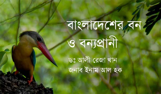 Forests and wildlife in Bangladesh [Image: theblueyonder.com]